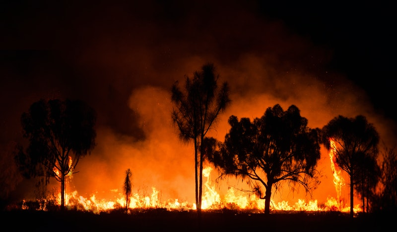 Australian wildfires are spreading and merging as of Monday, January 6, 2020.