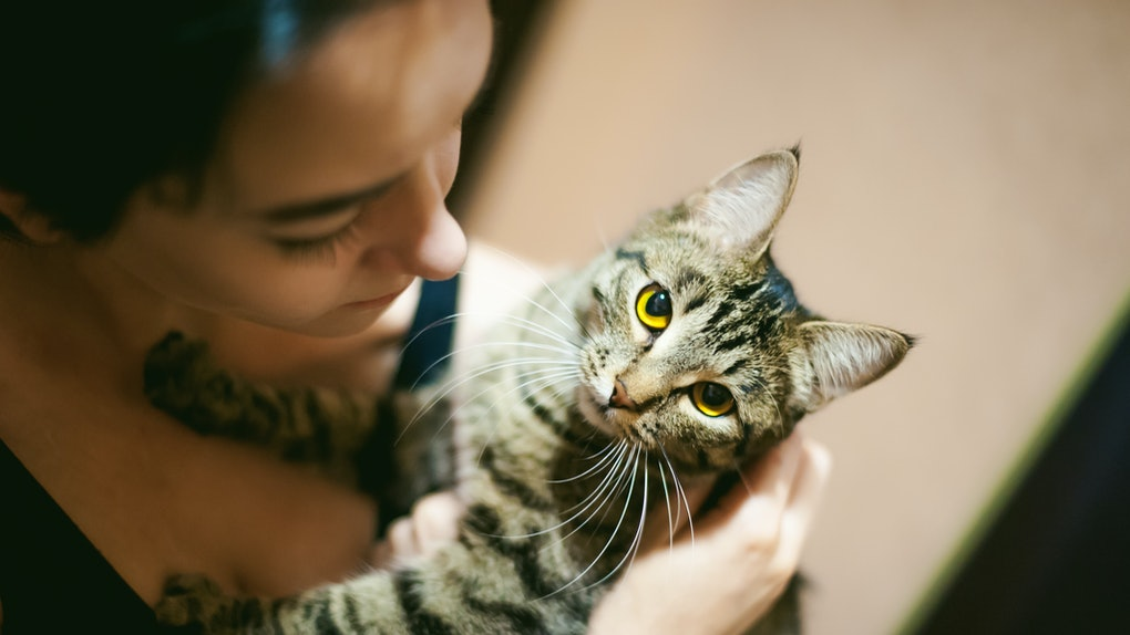 A woman looks down and holds her cat in her arms at home.