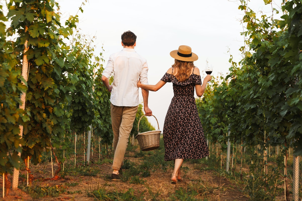 Looking for outdoor fall activities for couples? Try a vineyard tour.
