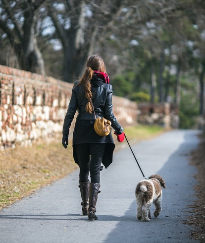 woman walking dog on leash in the park