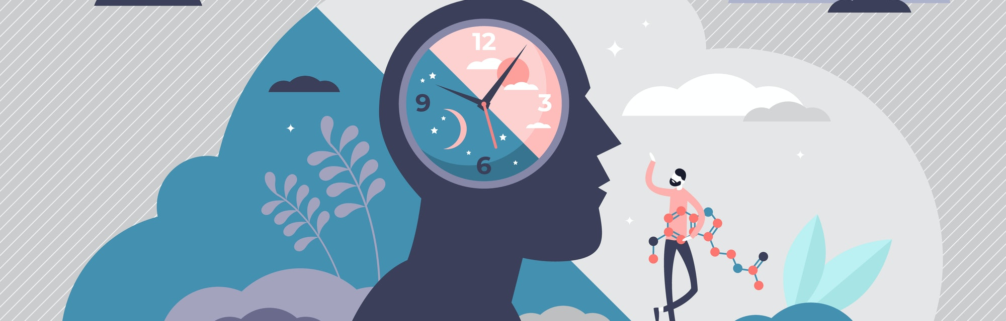 Circadian rhythm concept, tiny person vector illustration. Day and night cycle scheme. Daily human body inner regulation schedule. Natural sleep-wake biological process. Abstract head with a clock.