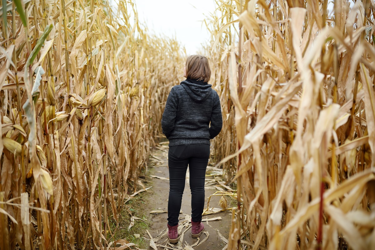 Young woman having fun on pumpkin fair at autumn. Person walking among the dried corn stalks in a co...