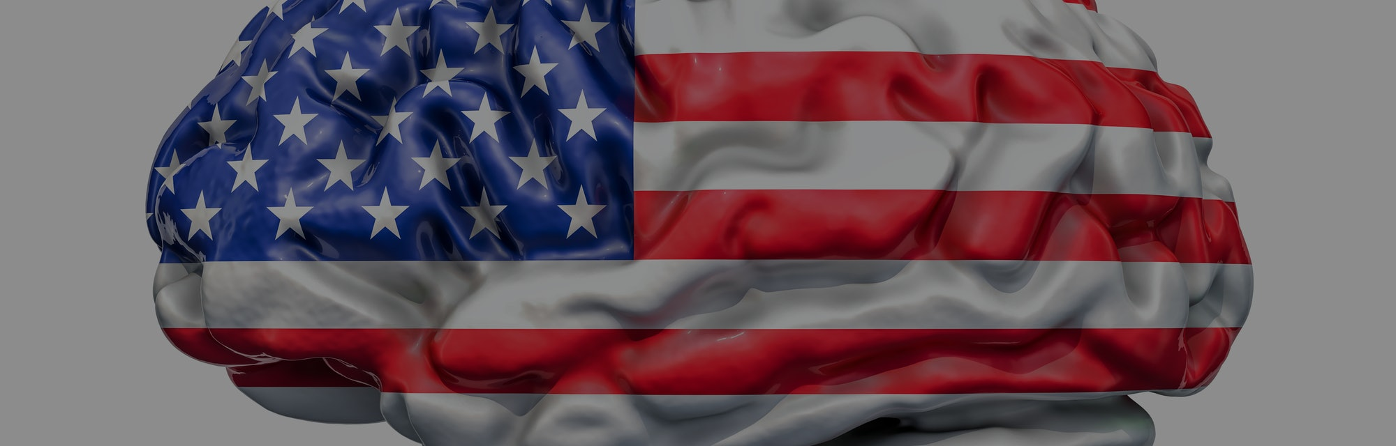 Human brain with American flag. Scientific research and education in the USA concept, 3D rendering isolated on white background