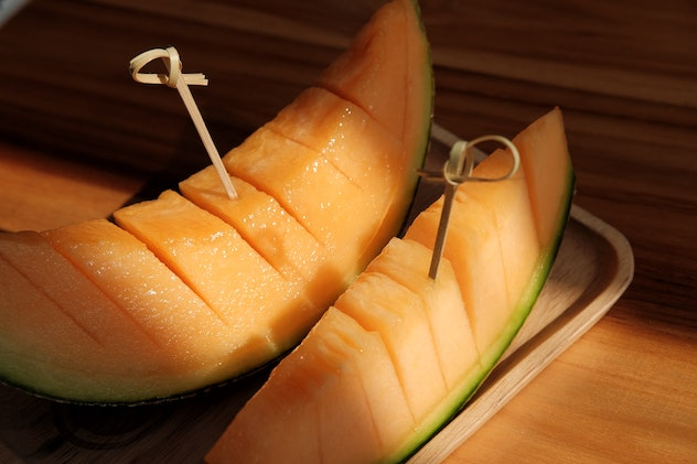 Melon/cantaloupe in plate