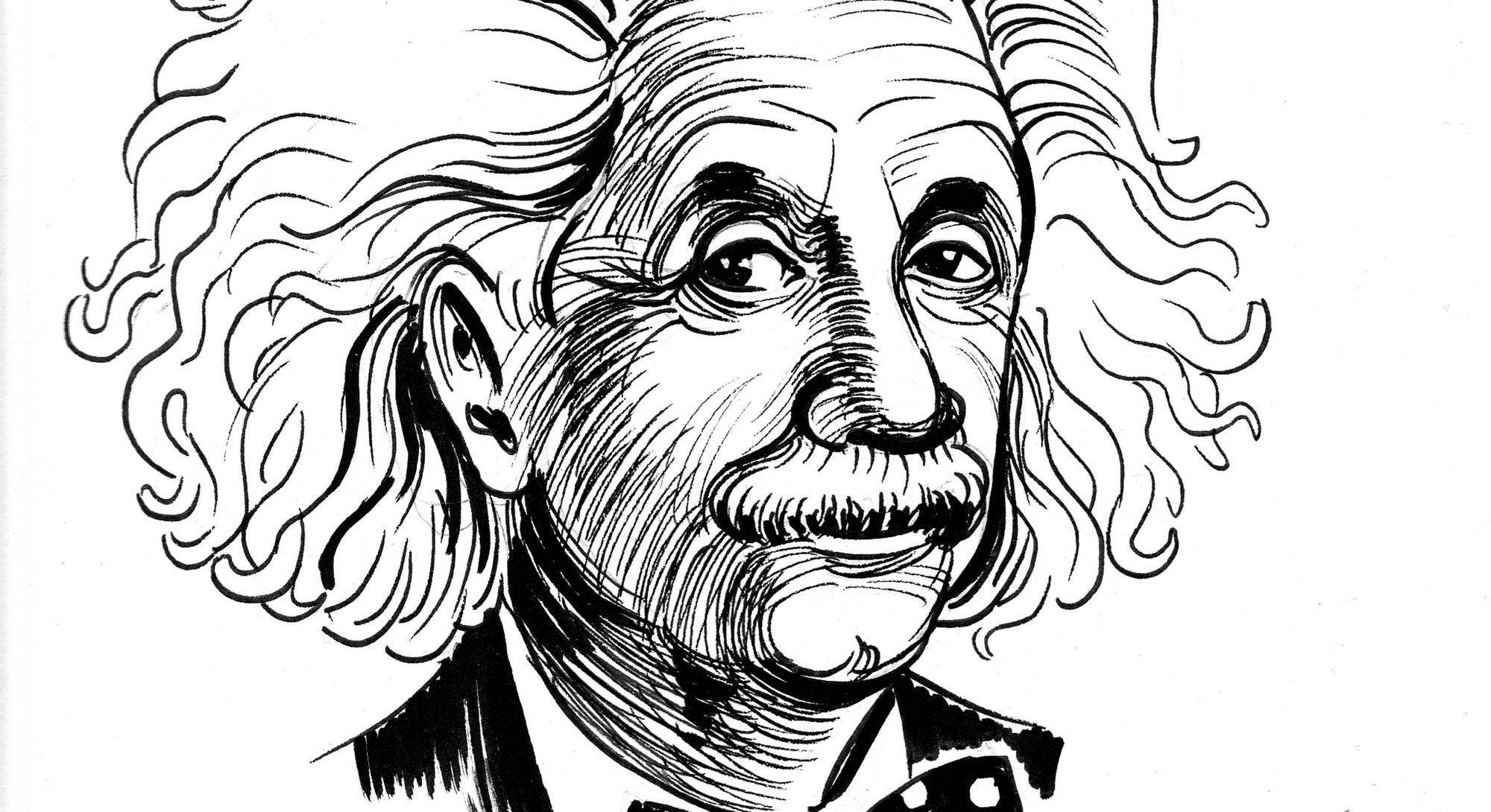 Albert Einstein. Ink black and white cartoon