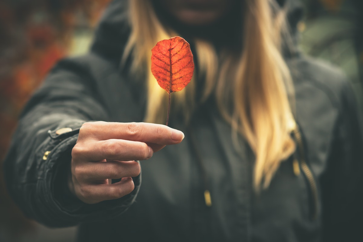 Woman hand giving autumn red leaf melancholy concept Travel Lifestyle moody colors