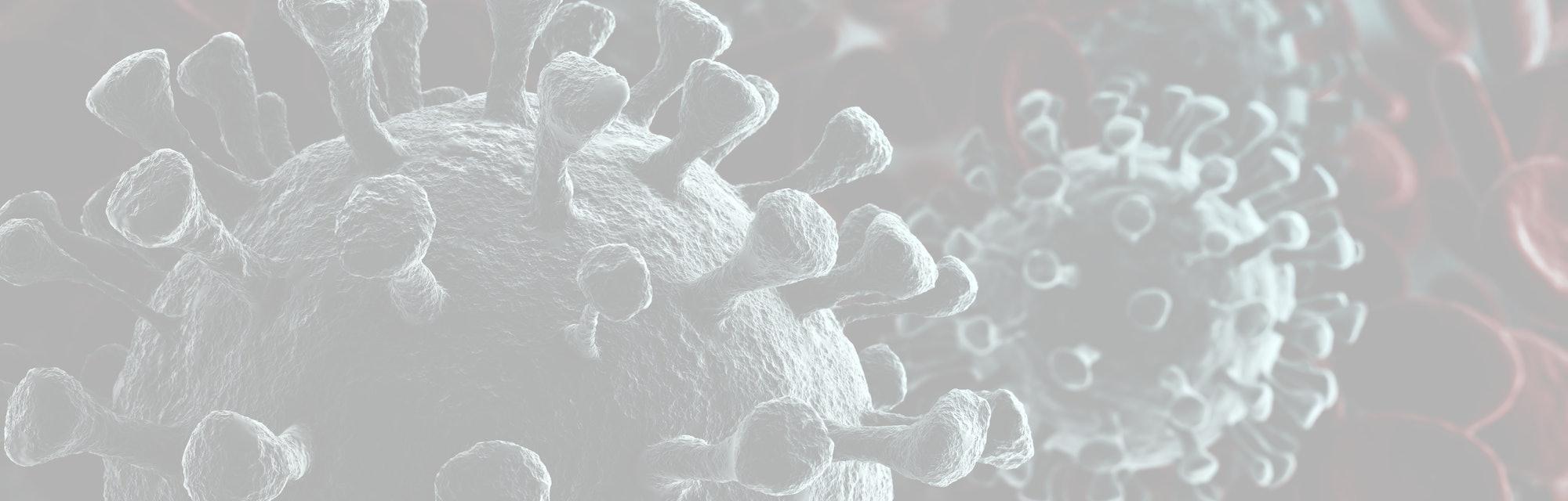 Coronavirus 2019-nCov novel coronavirus concept resposible for asian flu outbreak and coronaviruses influenza as dangerous flu strain cases as a pandemic. Microscope virus close up. 3d rendering.