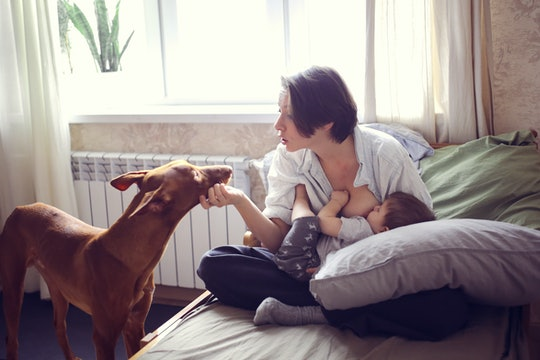Mom breastfeeds a baby while petting dog