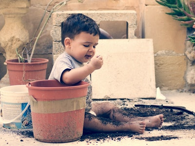 Your kid would have to eat *a lot* of dirt to get seriously sick, experts say.