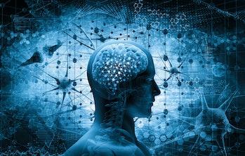 brain, thinking concept; 3d illustration