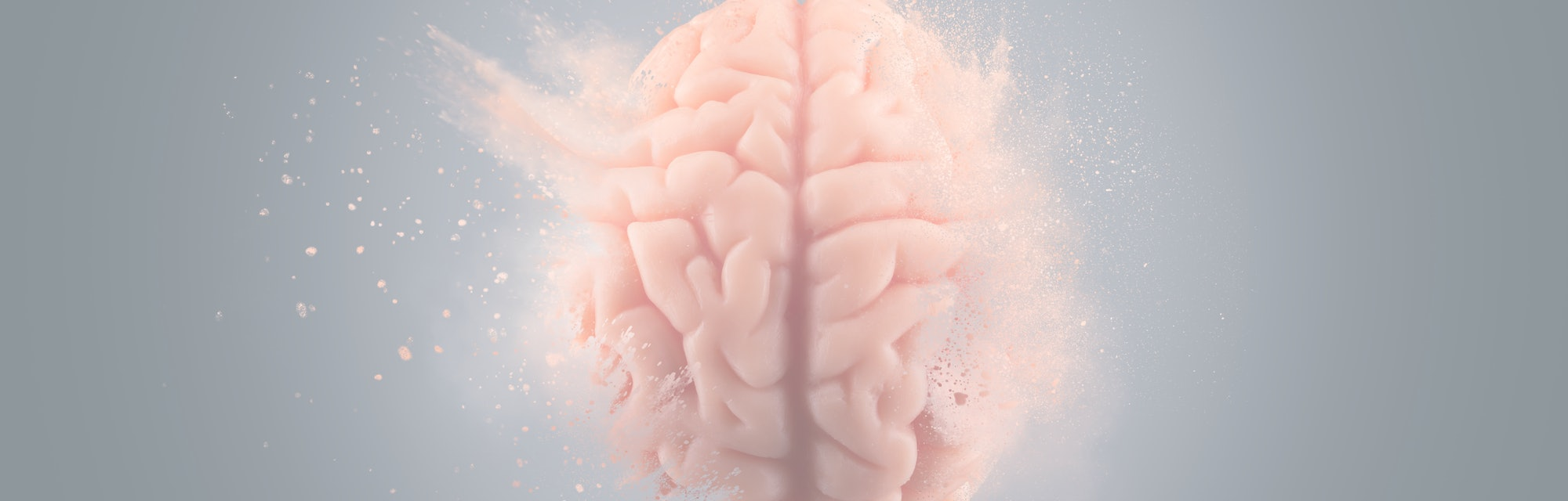 Human brain floating on a gray background. mind blown concept