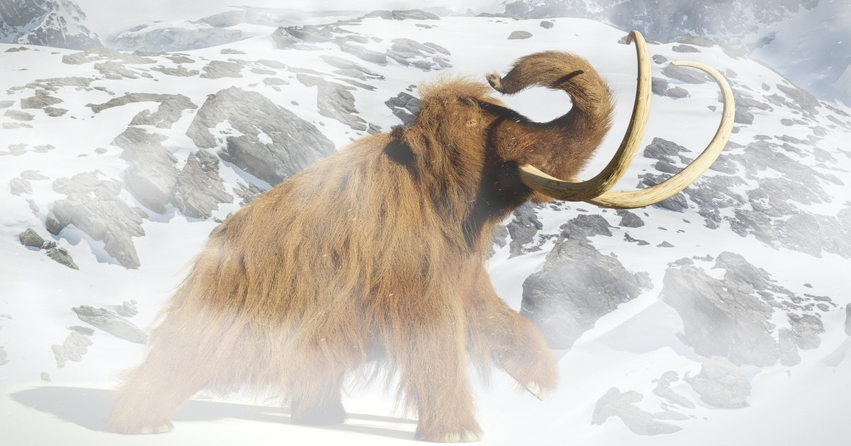 Woolly mammoth genetics study reveals their miserable, lonely end