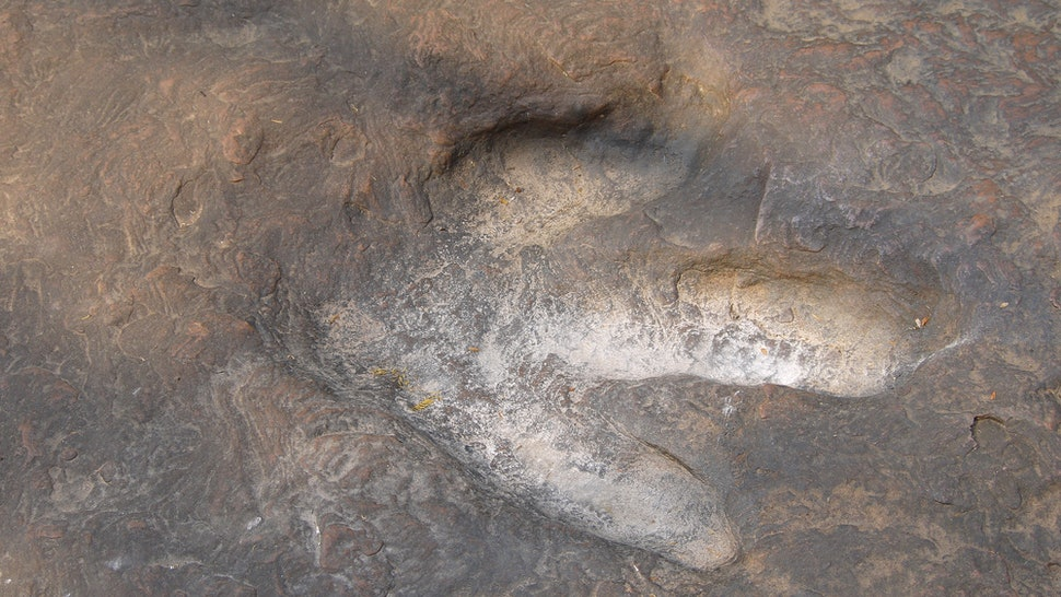 Real dinosaur footprint  at the forest park in Thailand , Real dinosaur footprint in the rock for background.