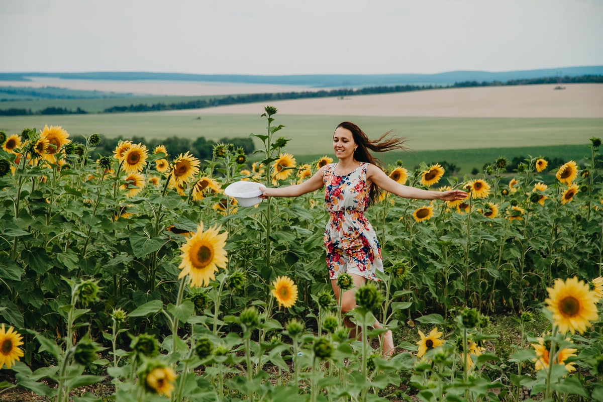 The girl runs into a field of sunflowers in a summer dress hands to the sides of the face in the frame.