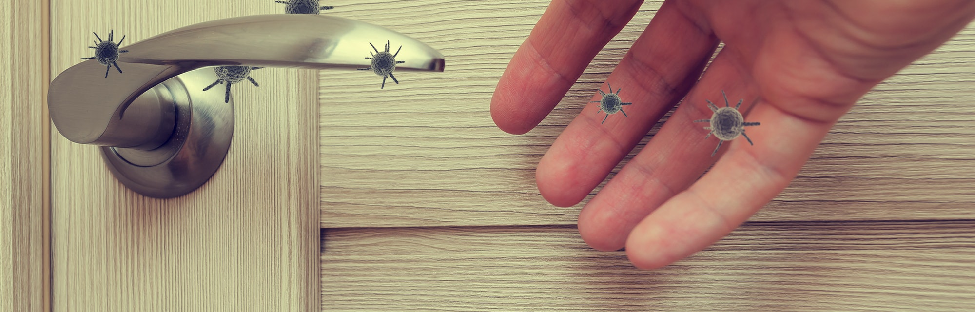 human life through which germs and viruses spread, door handle in an apartment in a room or house wi...