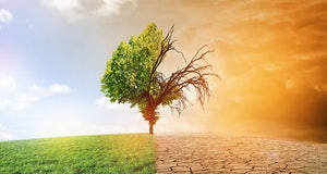 climate change dying earth