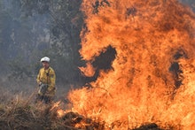 A New South Wales Rural Fire Service (NSW RFS) firefighters back burning on Long Gully Road in the n...