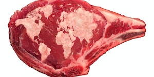 Swapping red meat for plants reduces one major medical risk