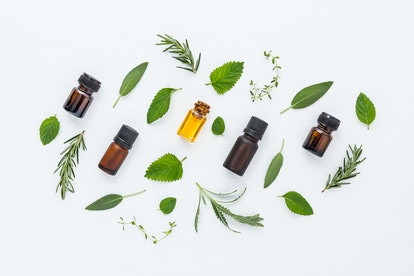 Bottle of essential oil and herbal medicine with fresh herbs lavender, sage, rosemary, thyme, mint, ...