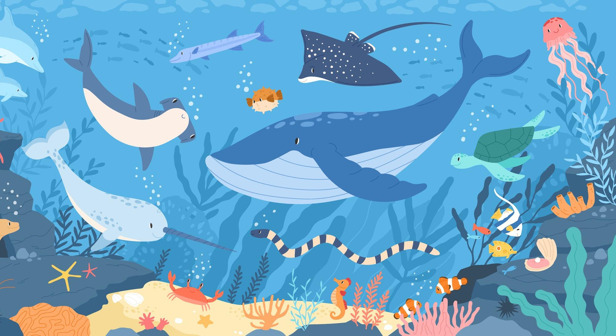 Fish and wild marine animals in ocean. Sea world dwellers, cute underwater creatures, coral reef inh...