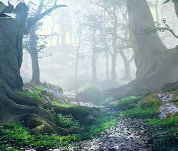 path through magical forest at sunrise, mysterious old trees, fantasy landscape, 3d rendering
