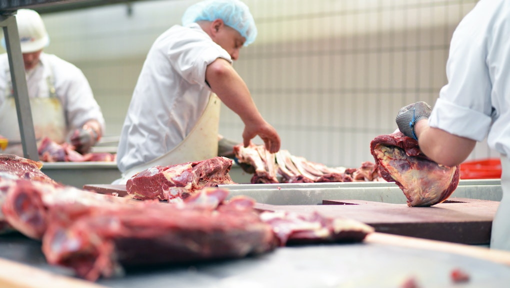 group of butchers works in a slaughterhouse and cuts freshly slaughtered meat (beef and pork) for sale and further processing as sausage