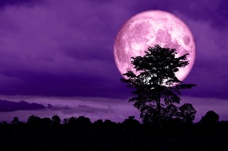 4 Zodiac Signs April's Full Pink Supermoon Will Affect The Most