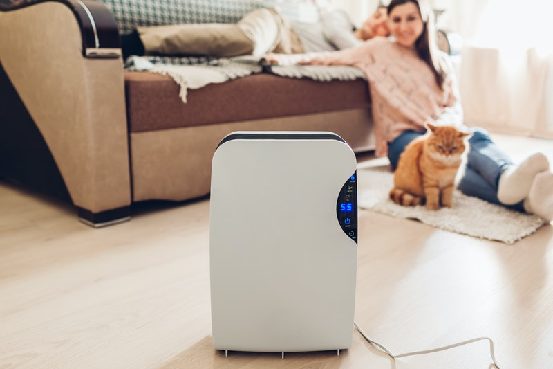 Dehumidifier with touch panel, humidity indicator, uv lamp, air ionizer, water container works at home while people chilling. Dampness concept