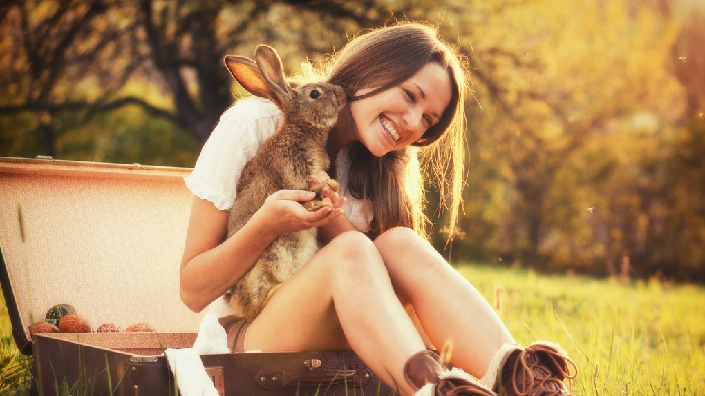 A happy brunette woman sits in a vintage suitcase in a field while holding a bunny.