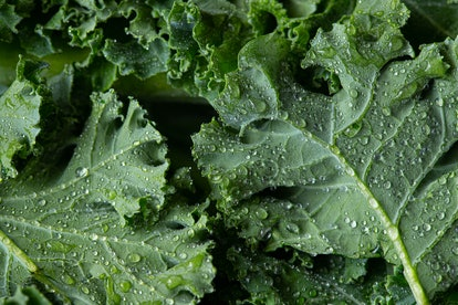 Keep the green theme going by fueling up on those healthy leafy vegetables for St. Patrick's Day.