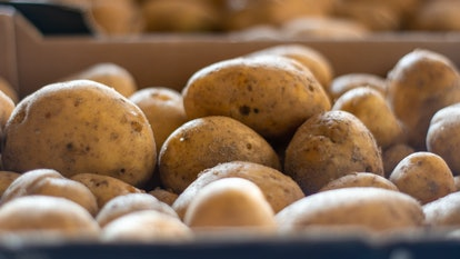 Reheating potatoes in the microwave oven may be harmful or dangerous.