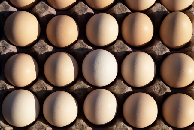 Flat lay Close-up view of raw chicken eggs in egg paper box.Overhead view of brown chicken eggs in an open egg carton.Fresh chicken eggs background. Top view Natural organic egg. healthy real food.