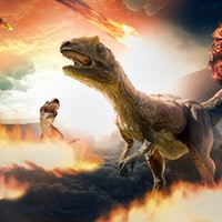 The dinosaurs didn't go out the way you think they did —study
