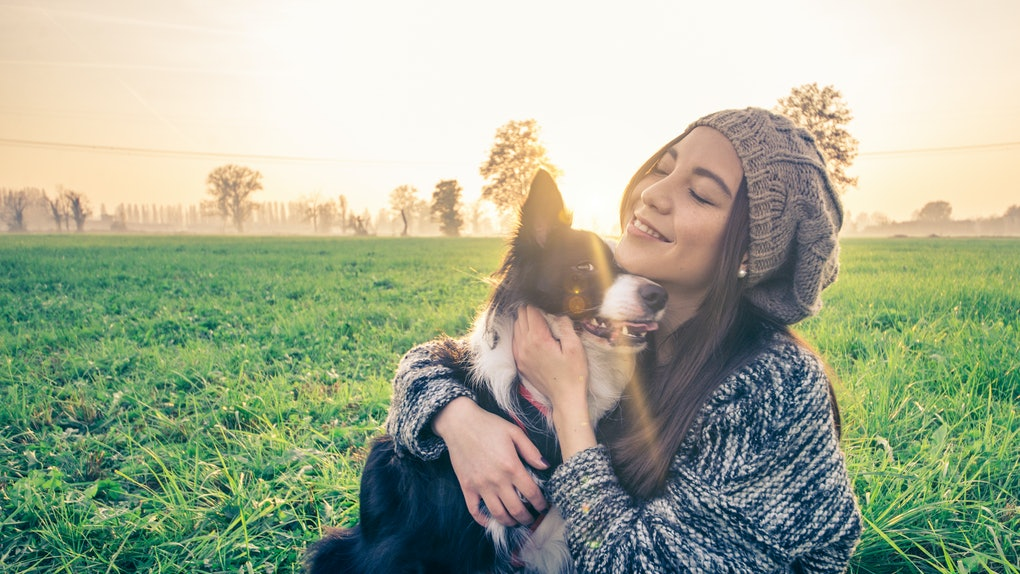 Young beautiful girl stroking her dog in a park at sunset - Asian woman playing with her dog