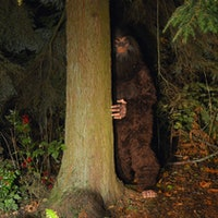 "NASA is going to use Sasquatch to find a large ""footprint"""