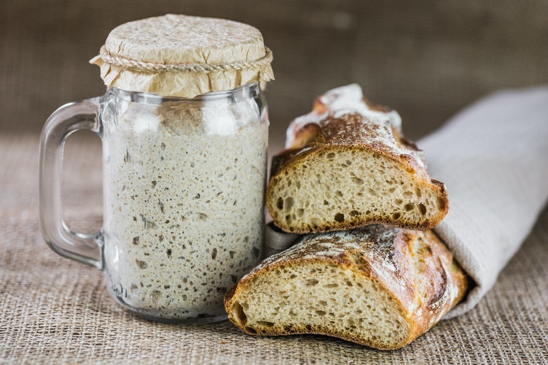 The leaven for bread is active. Startersourdough. The concept of a healthy diet