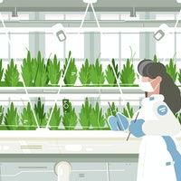 Scientists are hacking plant cells to fight climate change
