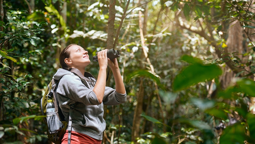 Hiker watching through binoculars wild birds in the tropical jungle. Bird watching tours. Ecotourism concept image travel.