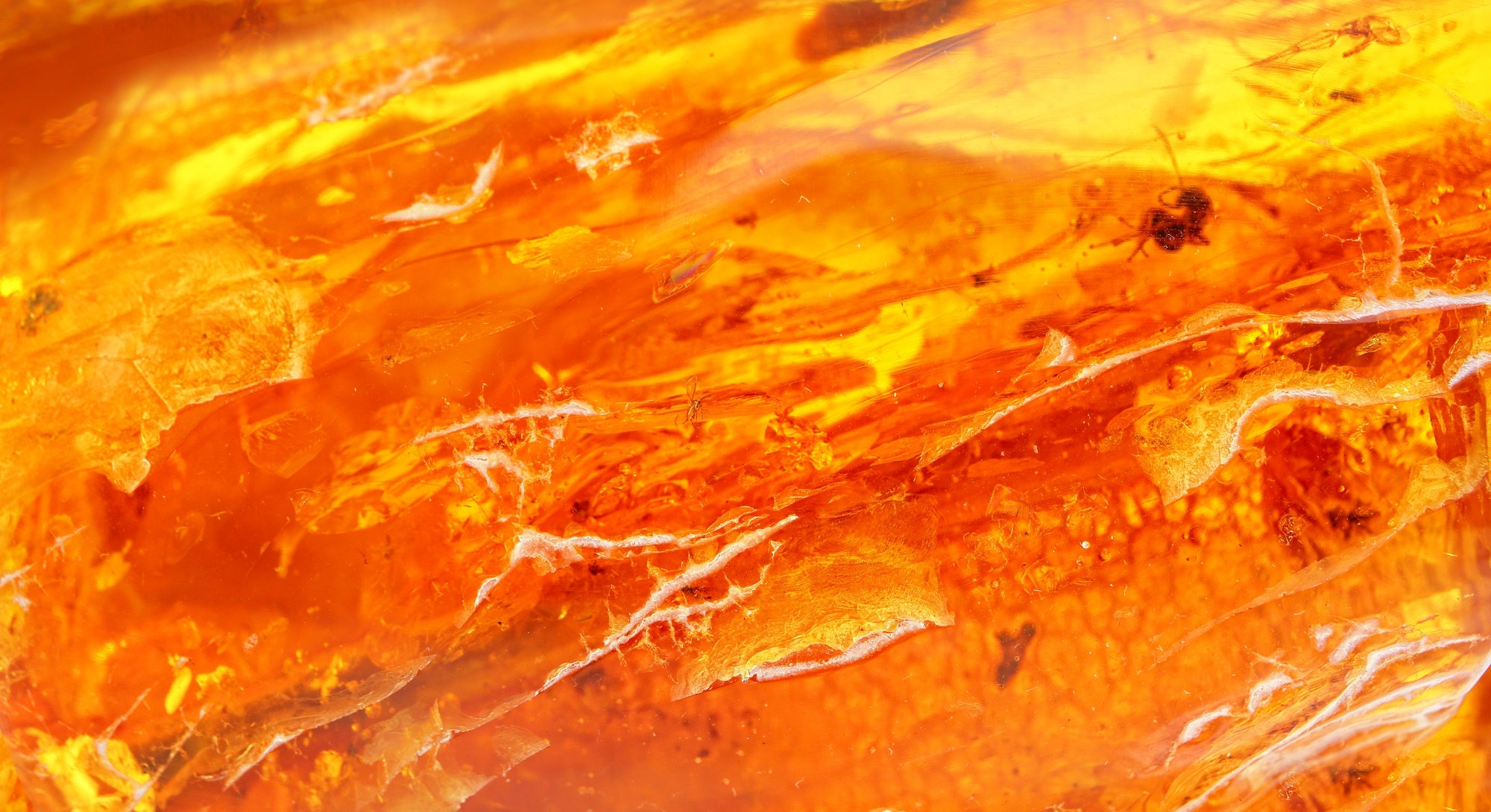 Natural amber texture. Multicolored background for advertising and banners. Vintage fossilized resin as a background. Red amber amber background. Close-up amber. Stone with inclusions