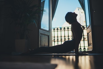 Gorgeous young woman practicing yoga indoor. Beautiful girl practice cobra asana at home. Calmness and relax, female yoga teacher doing yoga at home in the morning, Wellness Happiness Lifestyle