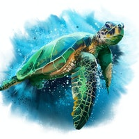 Study serves an unprecedented look at how sea turtles make 500-mile journeys