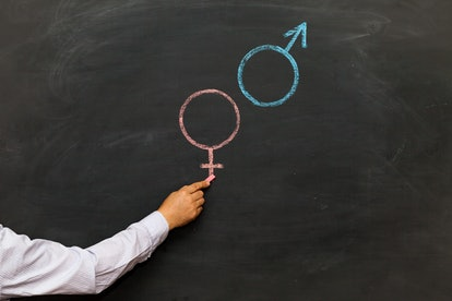 Gender symbols or signs for the male and female sex drawn on a blackboard. Sex Ed
