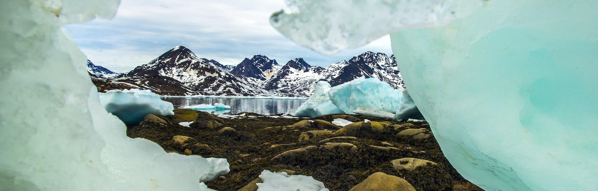 Sea Ice Window