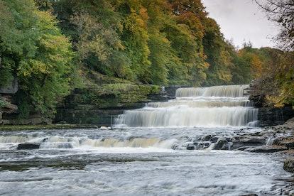 Wensleydale's Aysgarth Falls during Autumn
