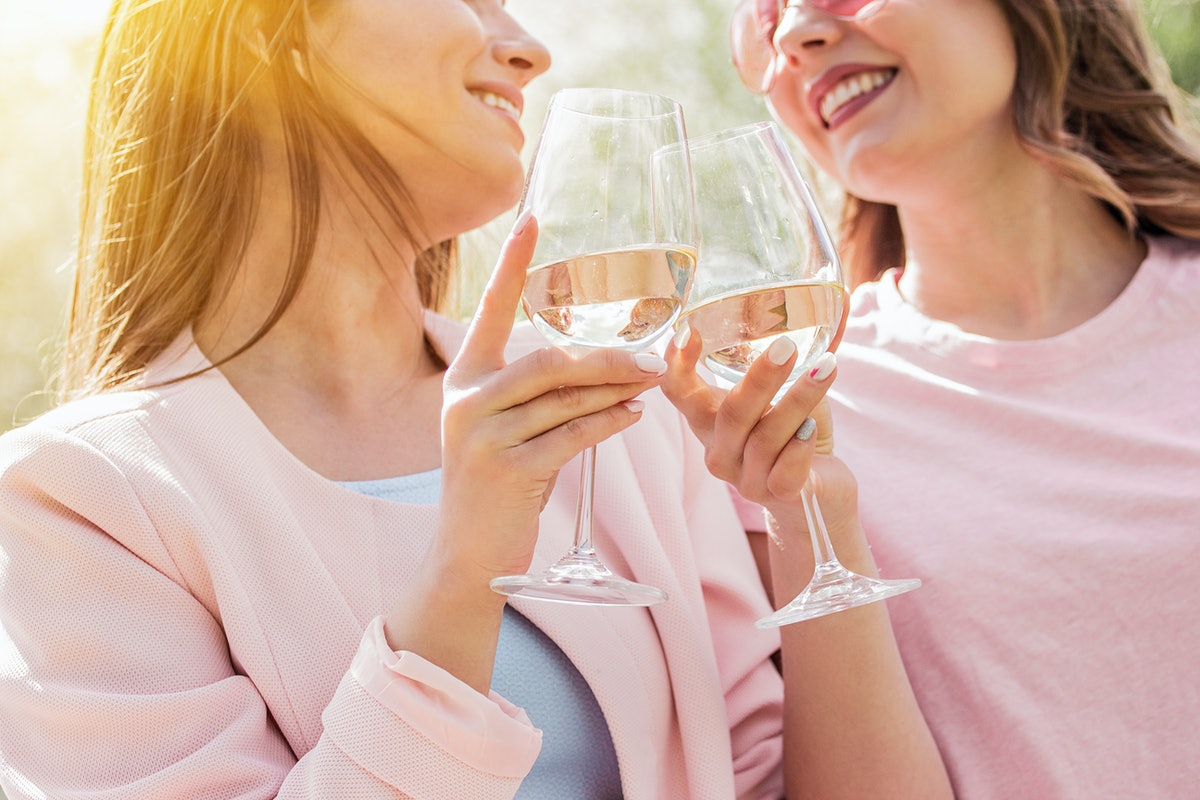 Close up of two happy women cheering with glasses of white wine and smiling while having picnic. Bea...