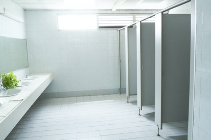 public toilet/restroom/lavatory/water closet/WC with white basins ceramic urinals and mirror and doors. From outside, interior.