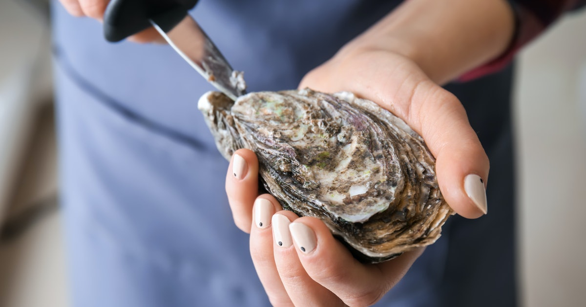 I JUST LOVE OYSTERS BUT ONLY NATURAL FOR ME  VISIT OYSTER BARS FROM ALL AROUND THE WORLD SO YOU CAN EAT THEM JUST LIKE ME - cover