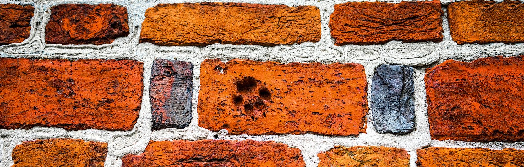 Footprint on red brick wall. Red brick wall footprint. Red brick wall texture. Brick wall footprint