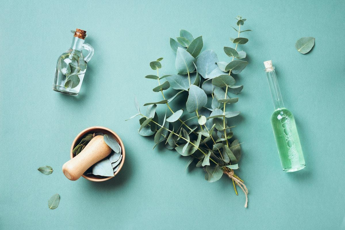 Bowl, bottles of eucalyptus essential oil, mortar, bunch of fresh eucalyptus branches on green backg...