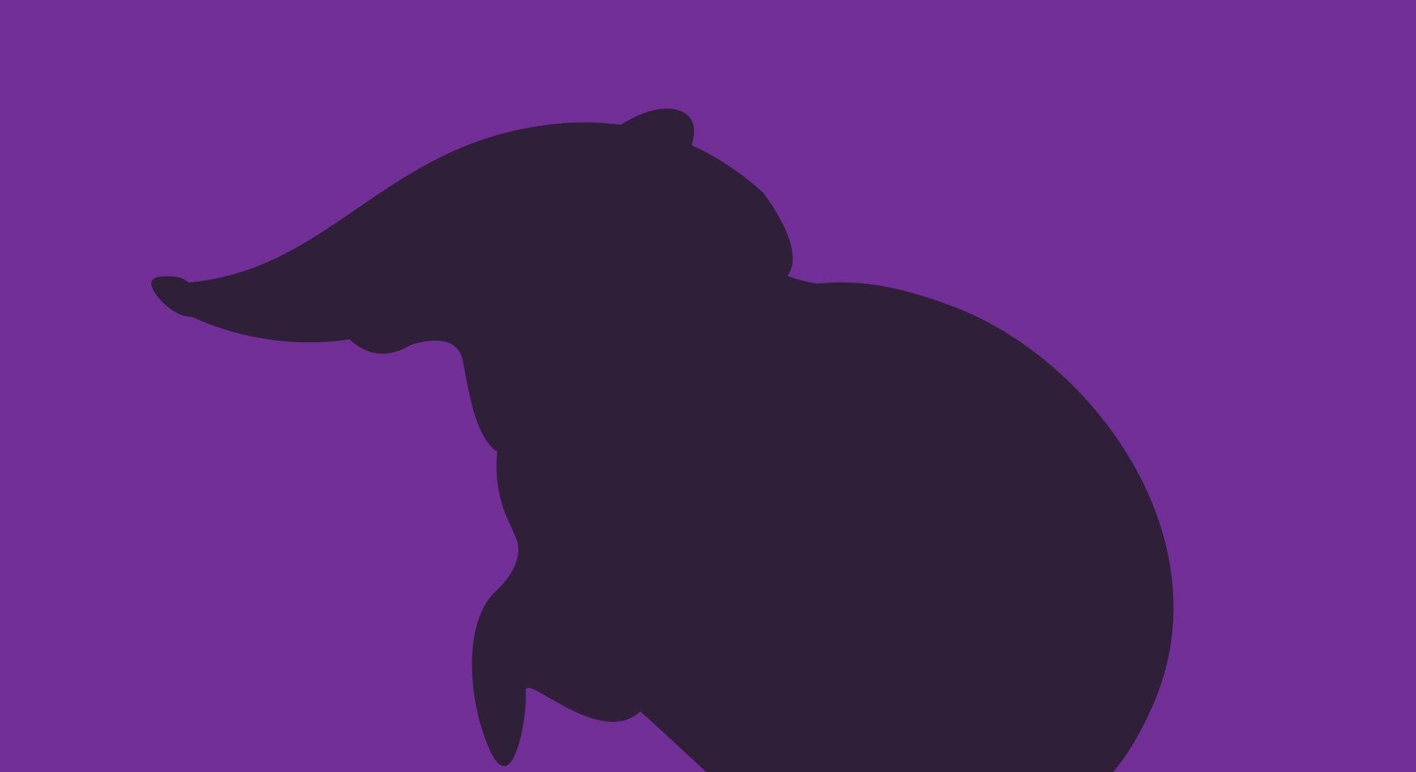 Black and rufous elephant shrew,vector illustration, black silhouette